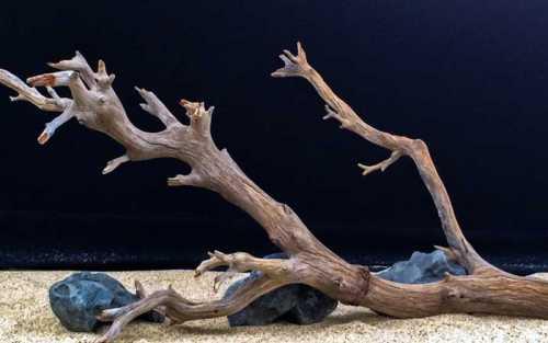 Коряги для аквариума