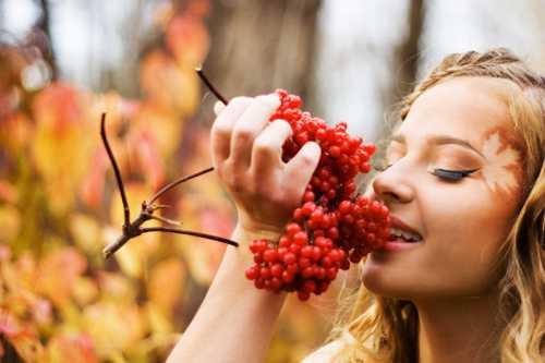 Какая бы болезнь ни настигла лозу, ее первые симптомы обычно проявляются тем, что листья винограда желтеют и отмирают