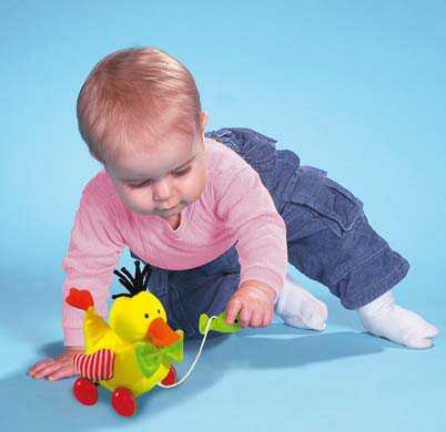 Любознательность младенца растет
