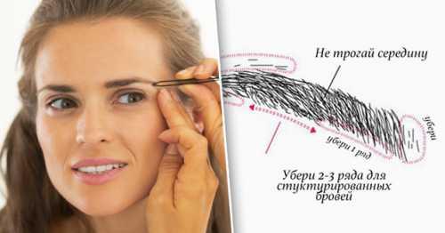 Чтобы определить точки начала, конца и верхушку брови, проводятся линии