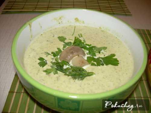 Вариации на тему грибного супа с курицей