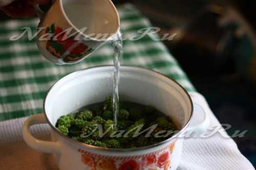 Варенье из сосновых шишек: как правильно варить