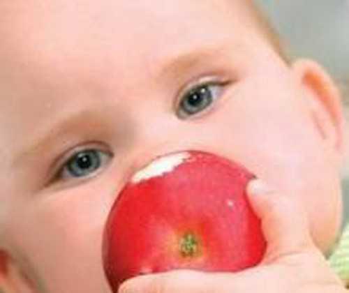 Терьеры в возрасте лет достаточно часто перерастают аллергию, она больше не дает о себе знать