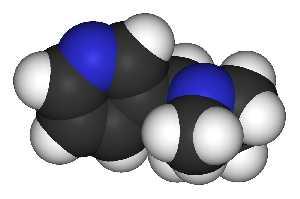 На гнашлось одно испытание, которое сравнило влияние цитизина и плацебо и обнаружило достоверно более высокие уровни прекращения курения по прошествии двух лет